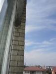 Ласточкино гнездо за нашим окном в Ставрополе