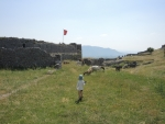 Албания. Крепость Розафа. Макс ловит баранов
