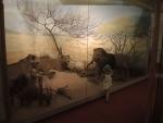 Музей живности. Бриони
