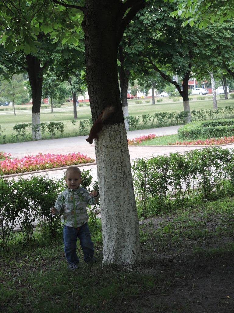 Парк  в Гомеле. Макс ловит белку