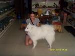 Обалденная собачка в чайном магазине
