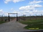 Польша. Освенцим - 2. Дорога, по которой их уводили на досмотр и дезинфекцию. Но так везло не всем. Большинство заключённых по ней же шли прямиком в газовые камеры и крематории. А справа и слева везде стояли деревянные бараки