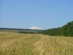 Эльбрус в поле