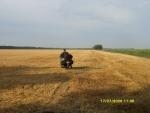 На поле в Тамани