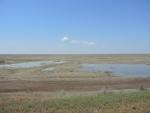дно Большого Аральского моря