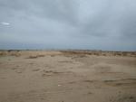 Пески АралКум