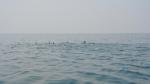 На лодке вокруг острова Хенгам